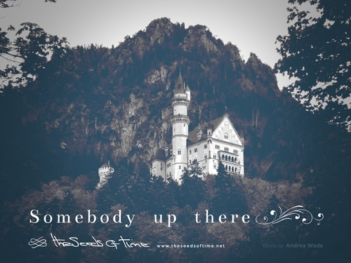 Photograph by Andrea Wade for song Somebody up there from album titled Long Road on which there is shown Neuschwanstein Castle looking over the woods