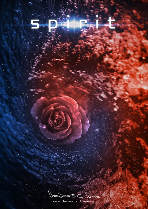 Poster art for song 'Spirit' by The Seeds of Time on which there is shown a digitally created abstract illustration of a whirlpool in spacetime of opposing red and blue colours with a rose flower right signifying spirit
