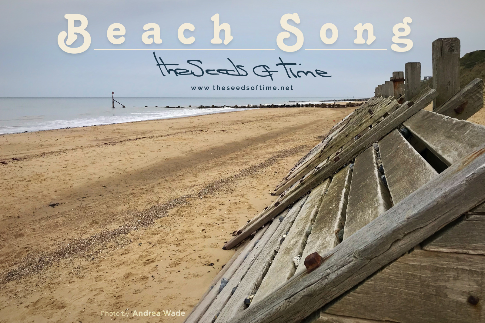 Photograph by Andrea Wade for song 'Beach Song, Pt. 1' from album titled 	Pumpkin Soup on which there is shown a sandy beach with wooden wave breakers